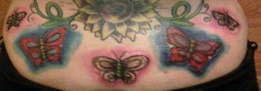 Butterflys-in_progress