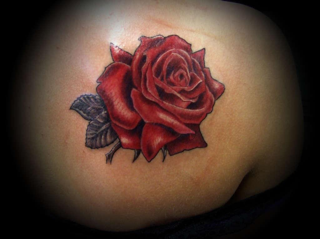 Color_rose