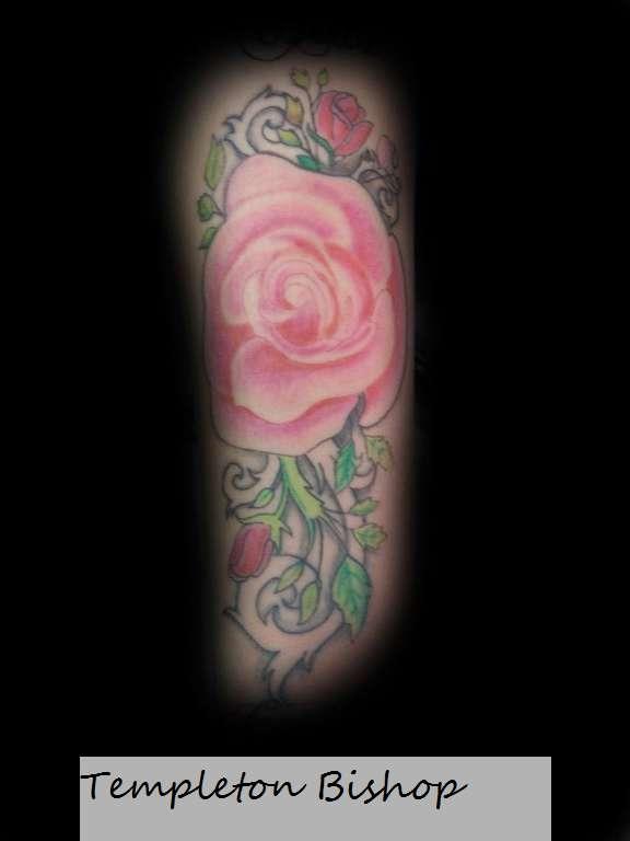 Rose_tat