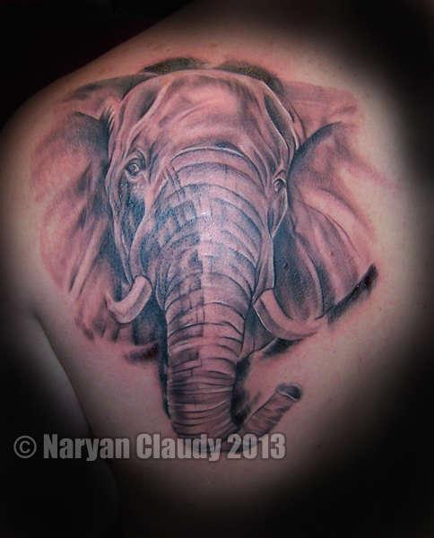 Elephantwebsite-1341
