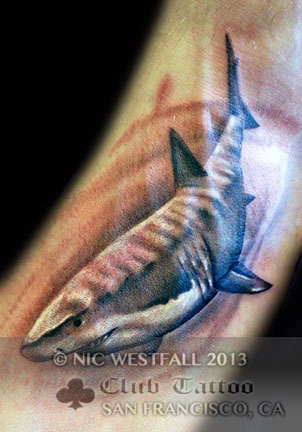 Club-tattoo-nic-westfall-san-francisco-pier-39-shark