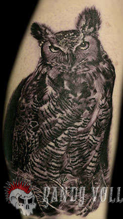 Club-tattoo-randy-vollink-scottsdale-owl-portrait-jpg