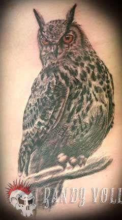 Club-tattoo-randy-vollink-scottsdale-owl-jpg