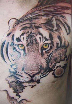 Jackdamore tiger cat animals for Club tattoo mesa