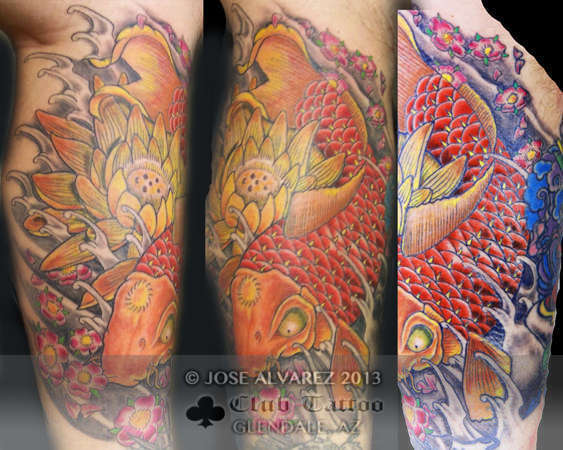 Josealvarez japanese koi for Club tattoo mesa