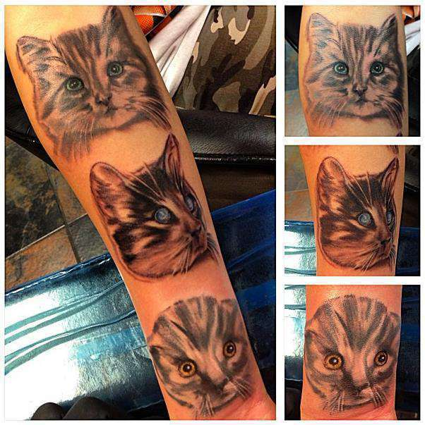 Catstamps