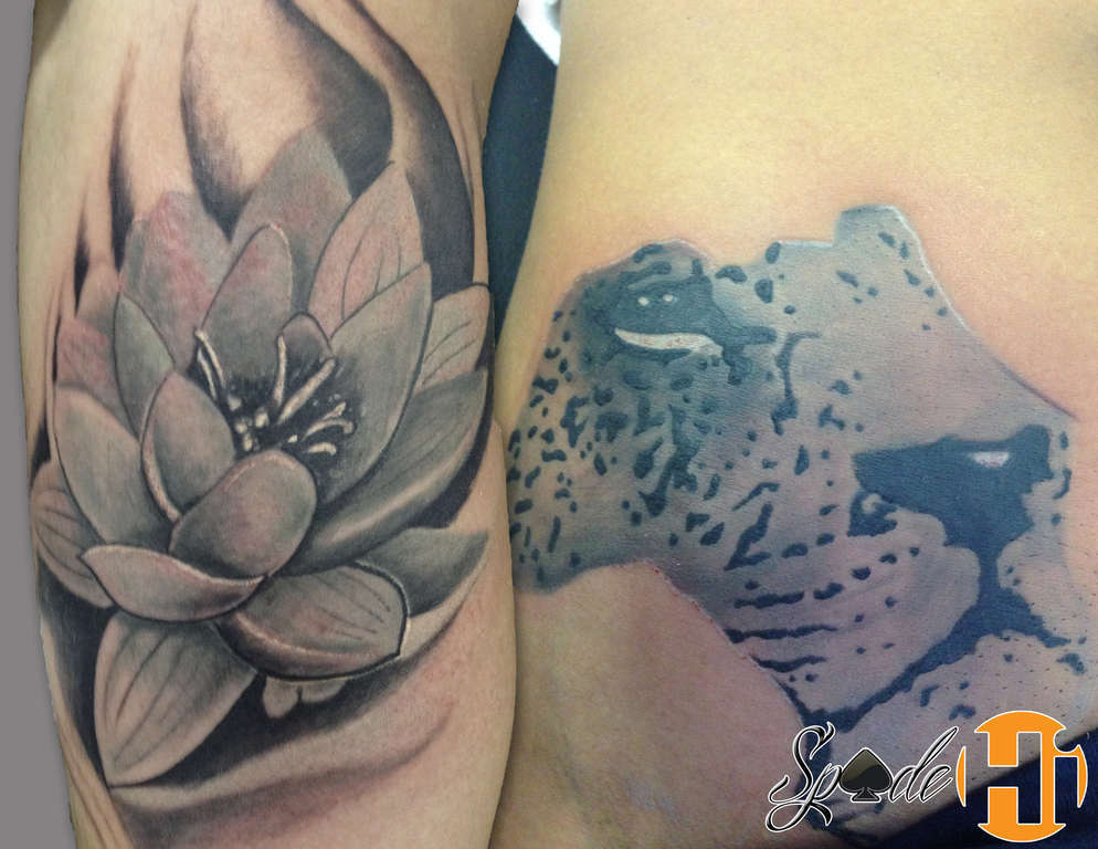 Spadetattoos by spade best tattoos tattoos flower gray africa lotus flower lion africa tattoos hyperink spade mightylinksfo