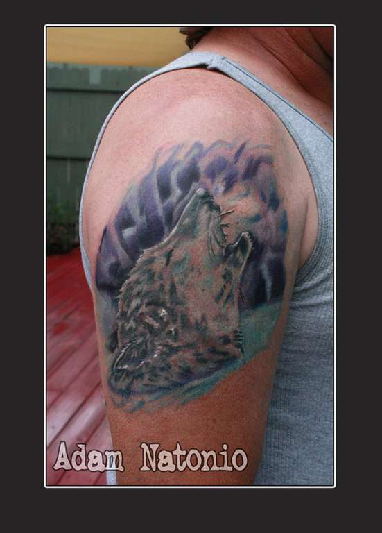 27d74390b Latest Arctic wolf Tattoos | Find Arctic wolf Tattoos
