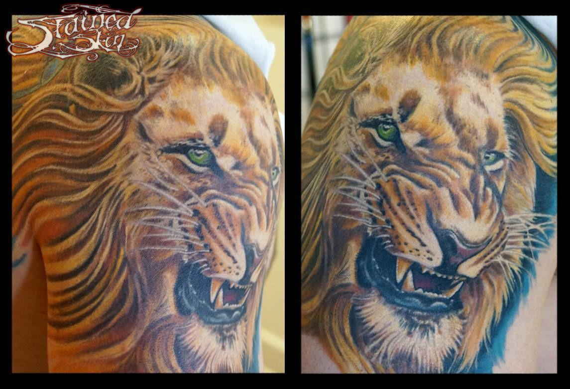 Dubois-lion-healed-jpg