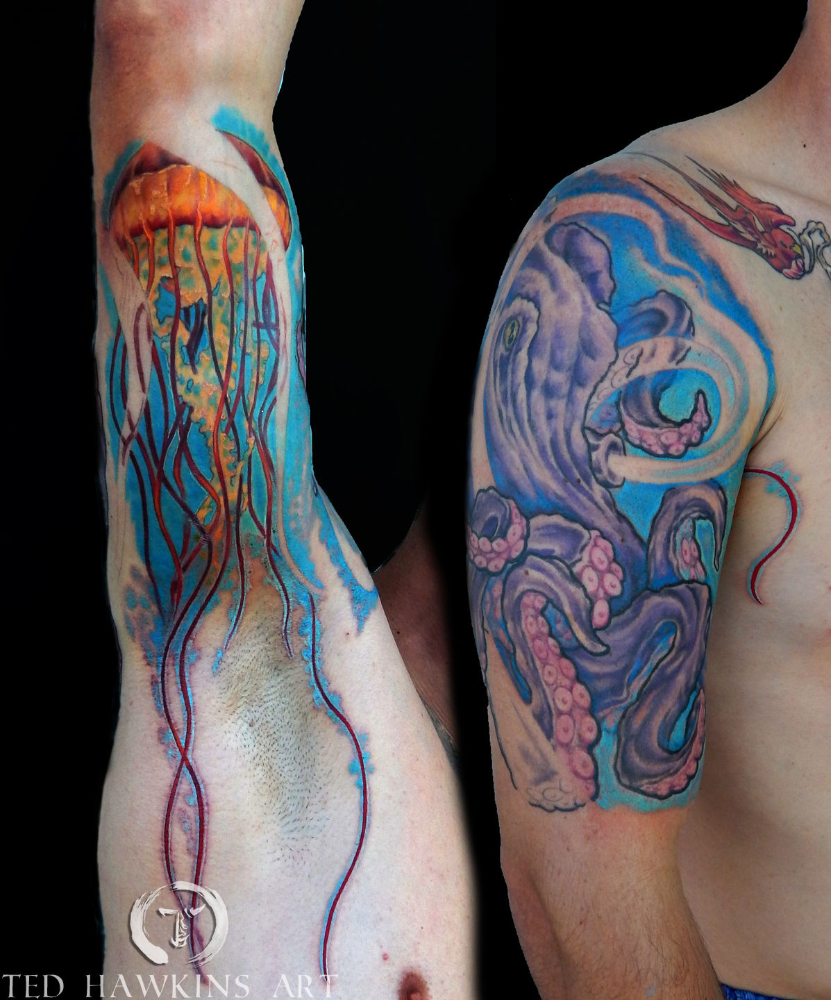 tedhawkinsart:octopus-and-jellyfish-half-sleeve-octopus ...