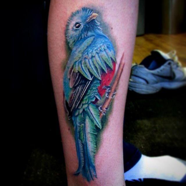 Lizvenom amazing realistic bird by liz venom from for Realistic bird tattoo