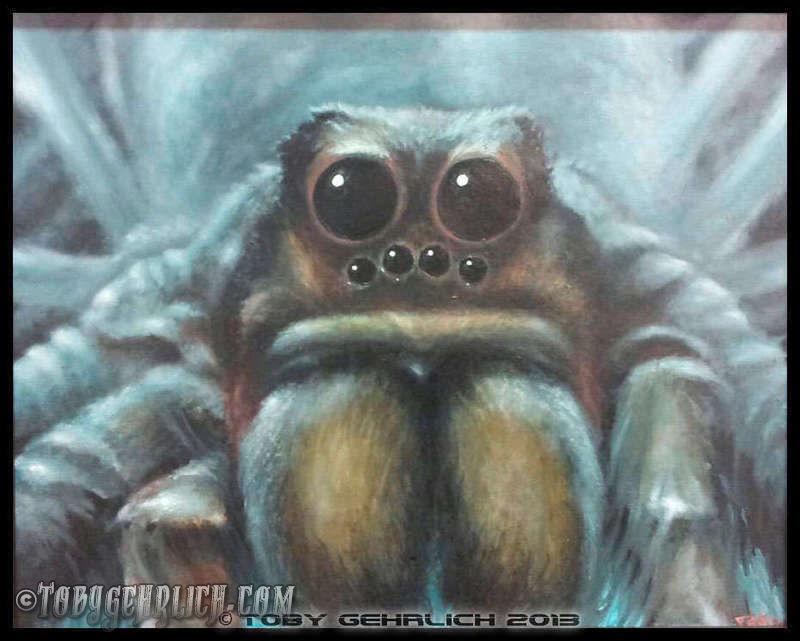 Hairy-spider-163-jpg