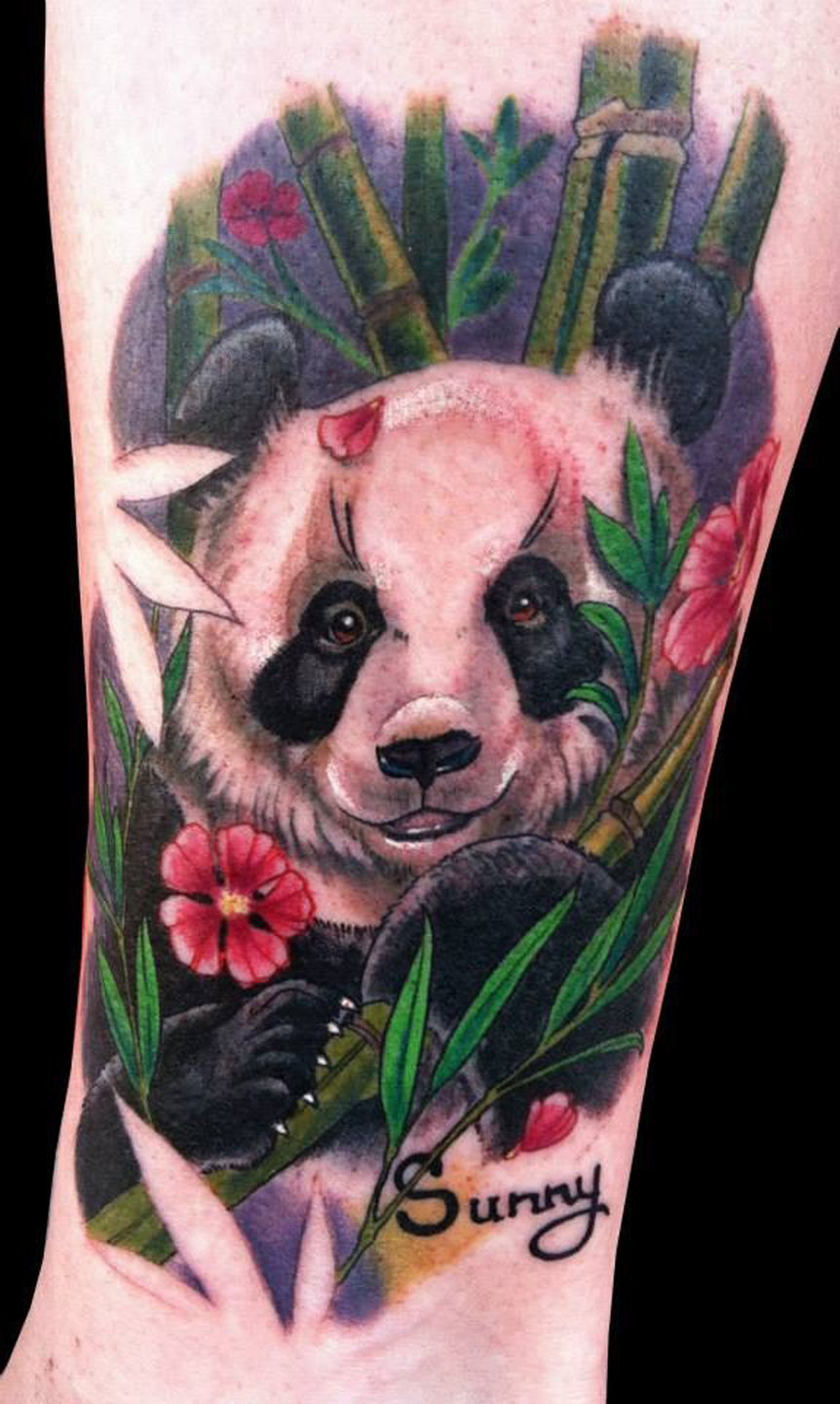 Nicoleelizabethlaabs Panda In Bamboo Color Bamboo Panda Animals