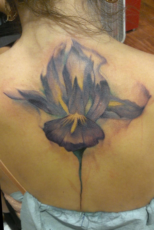Thejorellwatercolor iris on a spine watercolor watercolors iriswatercolor jpg izmirmasajfo