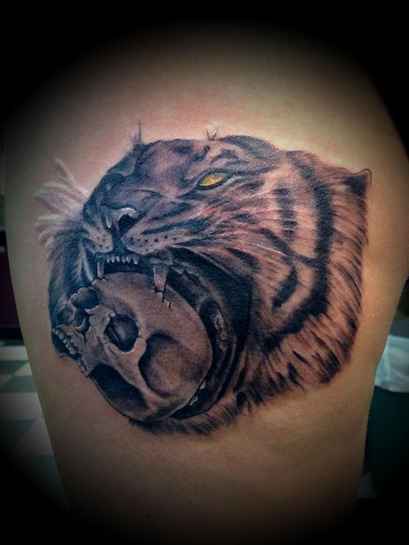 Tiger-jpg