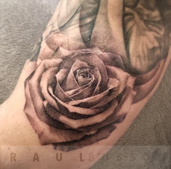 Wide_rose