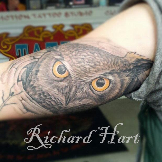 Watermark_owl_