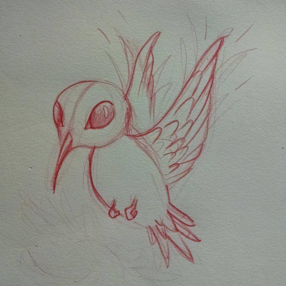 Hummimgbirdsketch