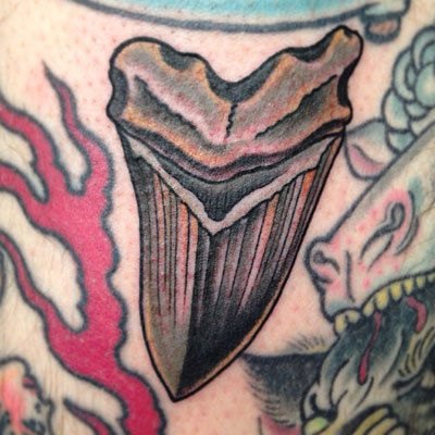Shark-tooth-tattoo-billy-jordan-the-bell-rose-tattoo-and-piercing-mobile-alabama