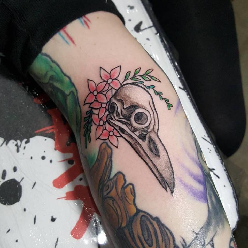Bird_skull